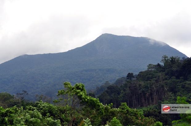 Mt. Irid